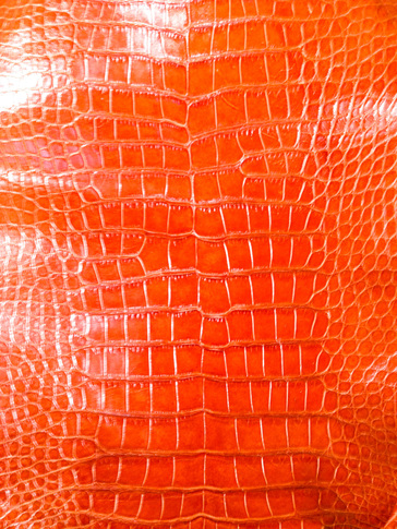 Used Clothing Wholesale >> Alligator Leather - Wholesale Alligator Skins for ...