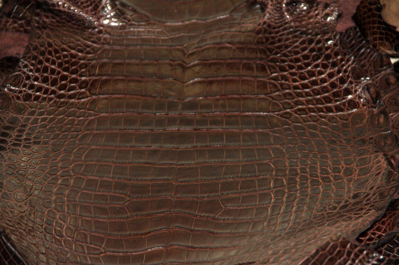alligator leather wholesale alligator skins for production high grade production quality. Black Bedroom Furniture Sets. Home Design Ideas