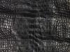 Genuine Alligator Belly Skin - Millennium Waxy Finish in Black